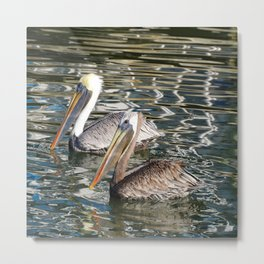 Florida wildlife Metal Print