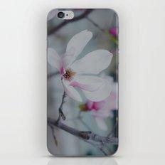 Sweet & Delicate iPhone & iPod Skin