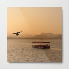 Flying Bird - Udaipur, India Metal Print