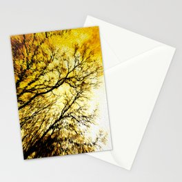 Morning Tree Tops Stationery Cards