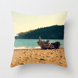 Rocks On The Wood Throw Pillow