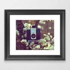 Flowering Brownie Framed Art Print