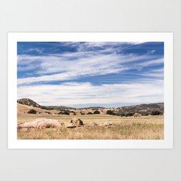 Dry meadows and rolling hills near Julian, CA Art Print