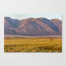 Jeep in Long Valley Canvas Print
