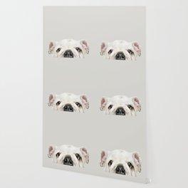 PUPPY FACE Wallpaper