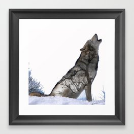 Alone Wolf Framed Art Print
