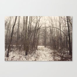 Bare Woods Canvas Print