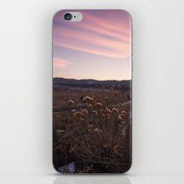 Before Sunset iPhone Skin