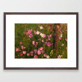 Pinks & Tree  Framed Art Print