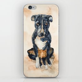 DOG #13 iPhone Skin