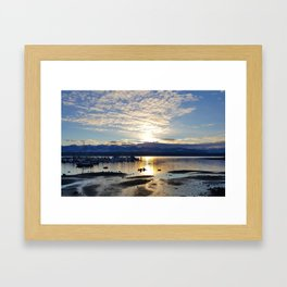 Costalevenin lory Framed Art Print