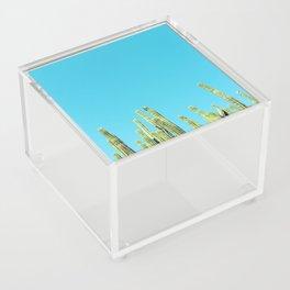 Desert Cactus Reaching for the Blue Sky Acrylic Box