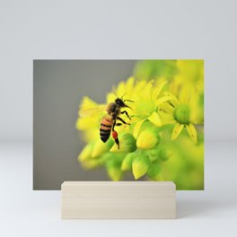 Busy Bee by Reay of Light Mini Art Print