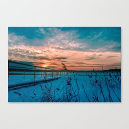 Waiting for the Summer Canvas Print