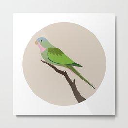 Princess Parrot Metal Print
