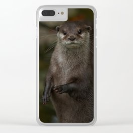 Curious Otter Clear iPhone Case