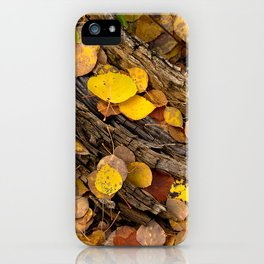 Log & Fall Leaves iPhone Case