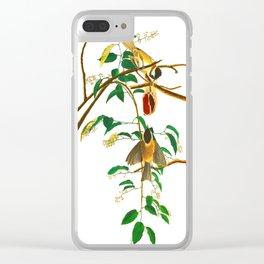 Carolina Titmouse Clear iPhone Case