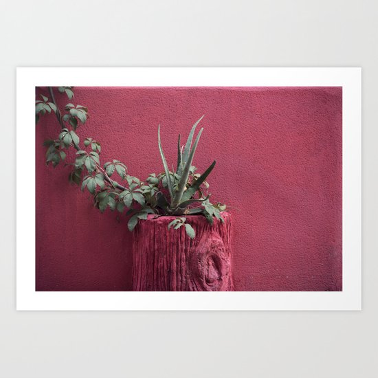 Pink and plant Art Print