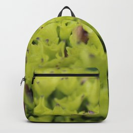 Hydrangea Unbloomed Backpack