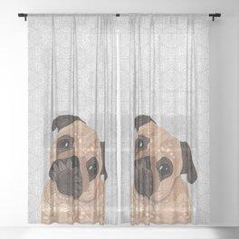 Pug Hug Sheer Curtain