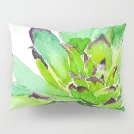 green succulent 2 Pillow Sham