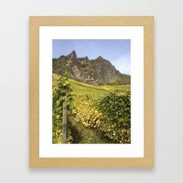 Rhineland Vineyards Framed Art Print