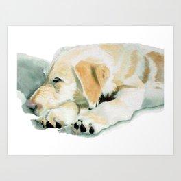 Sleepy Labradoodle Pup Art Print