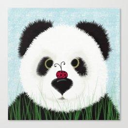 The Panda Bear And His Visitor Canvas Print