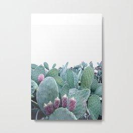 Mint Cactus Metal Print