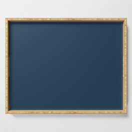 Best Seller Pratt and Lambert 2019 Noir Dark Blue 24-16 Solid Color - Single Shade Hue Serving Tray