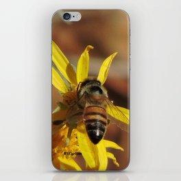 Desert Sunflower Pollen Picker iPhone Skin
