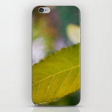 Zoning War iPhone & iPod Skin