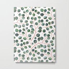 Simple Silver Dollar Eucalyptus Leaves on White Metal Print