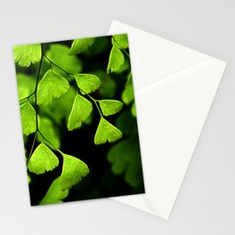 Maidenhair Ferns Stationery Cards