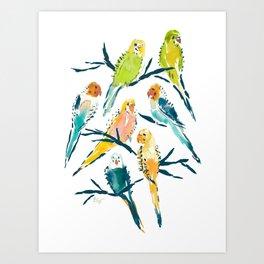 BOUNTIFUL BUDGIES Watercolor Parakeets Art Print