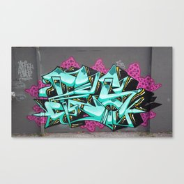 Fes Canvas Print