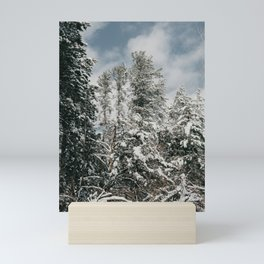 Snowy Trees | Nature and Landscape Photography Mini Art Print