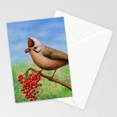 Taiwan Yuhina  Stationery Cards