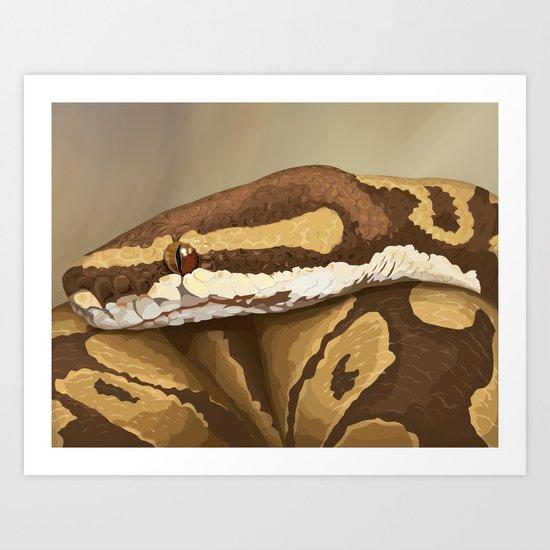 Ball Python (Odysseus) Art Print