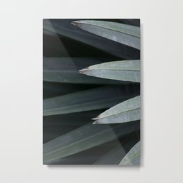 LINEAR NATURE Metal Print