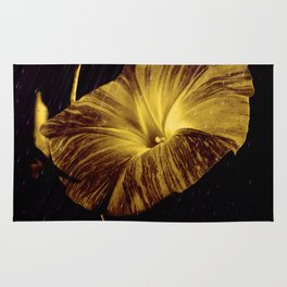 Golden Glory Rug