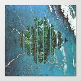 Habitat Canvas Print