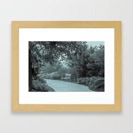 Lone Bench Framed Art Print
