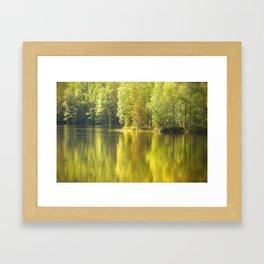 Summer Green Reflection Framed Art Print