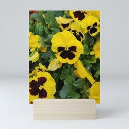 Pansies, Yellow Pansies Mini Art Print