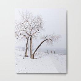 Colorado snow Metal Print