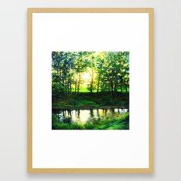Reflecting At Sunset Framed Art Print