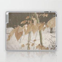 Few Fall Laptop & iPad Skin