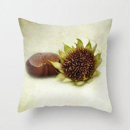 Autumn Fruits Throw Pillow